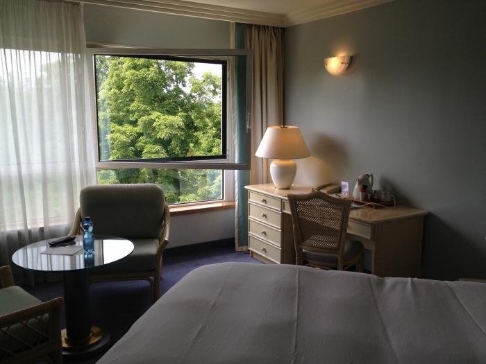 CHAMBRE HOTEL LES CELESTINS ***** : IMG_0890.JPG